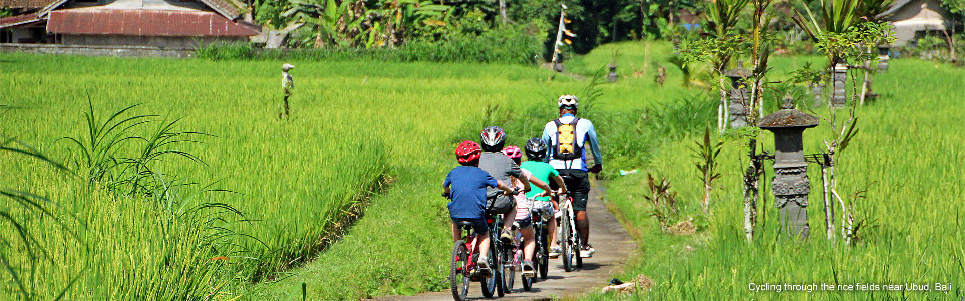Cycling through the rice fields in Bali, Indonesia